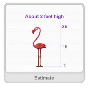 thumb_estimate